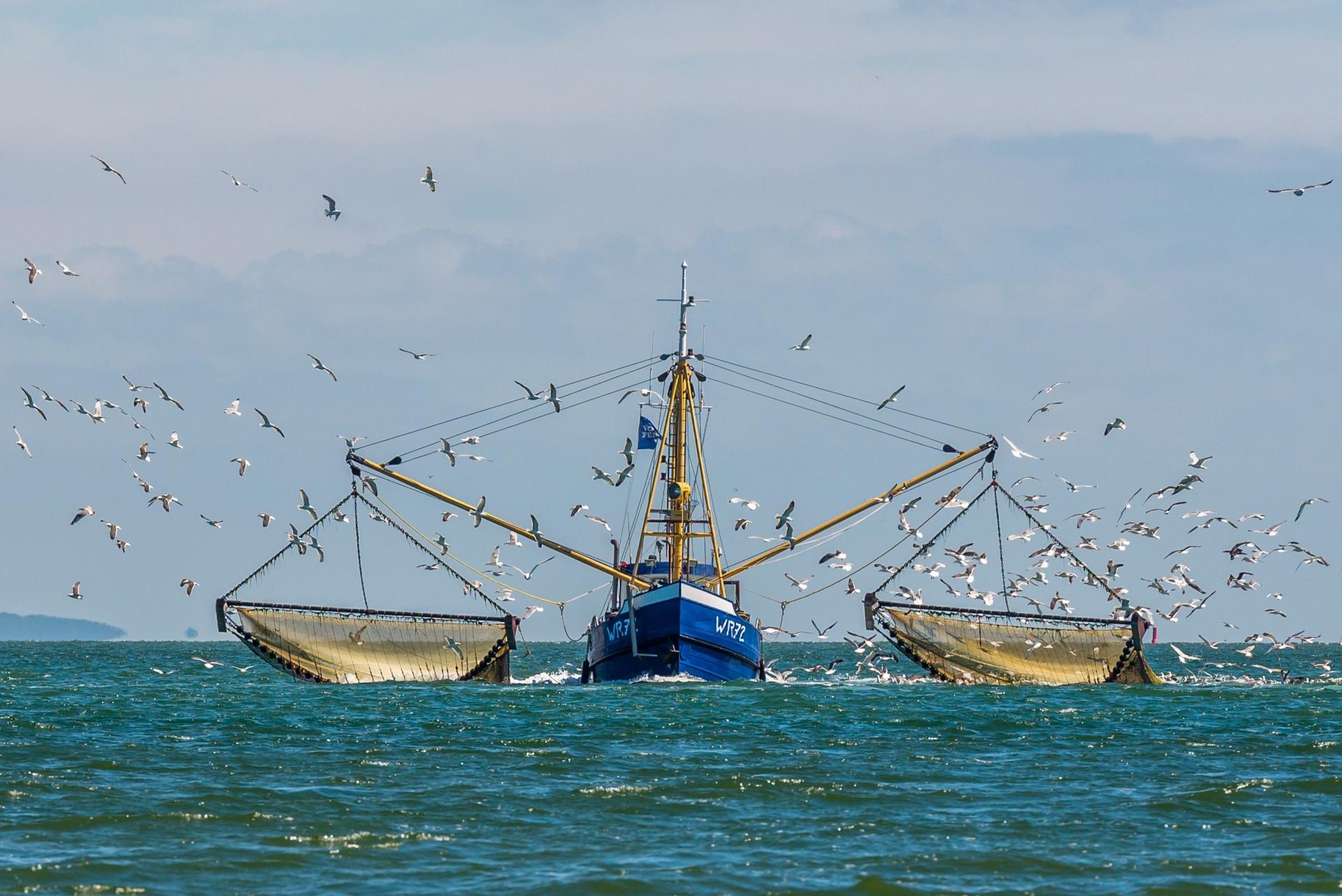 Kotter op zee vis vangen VVV Texel fotograaf Justin Sinner