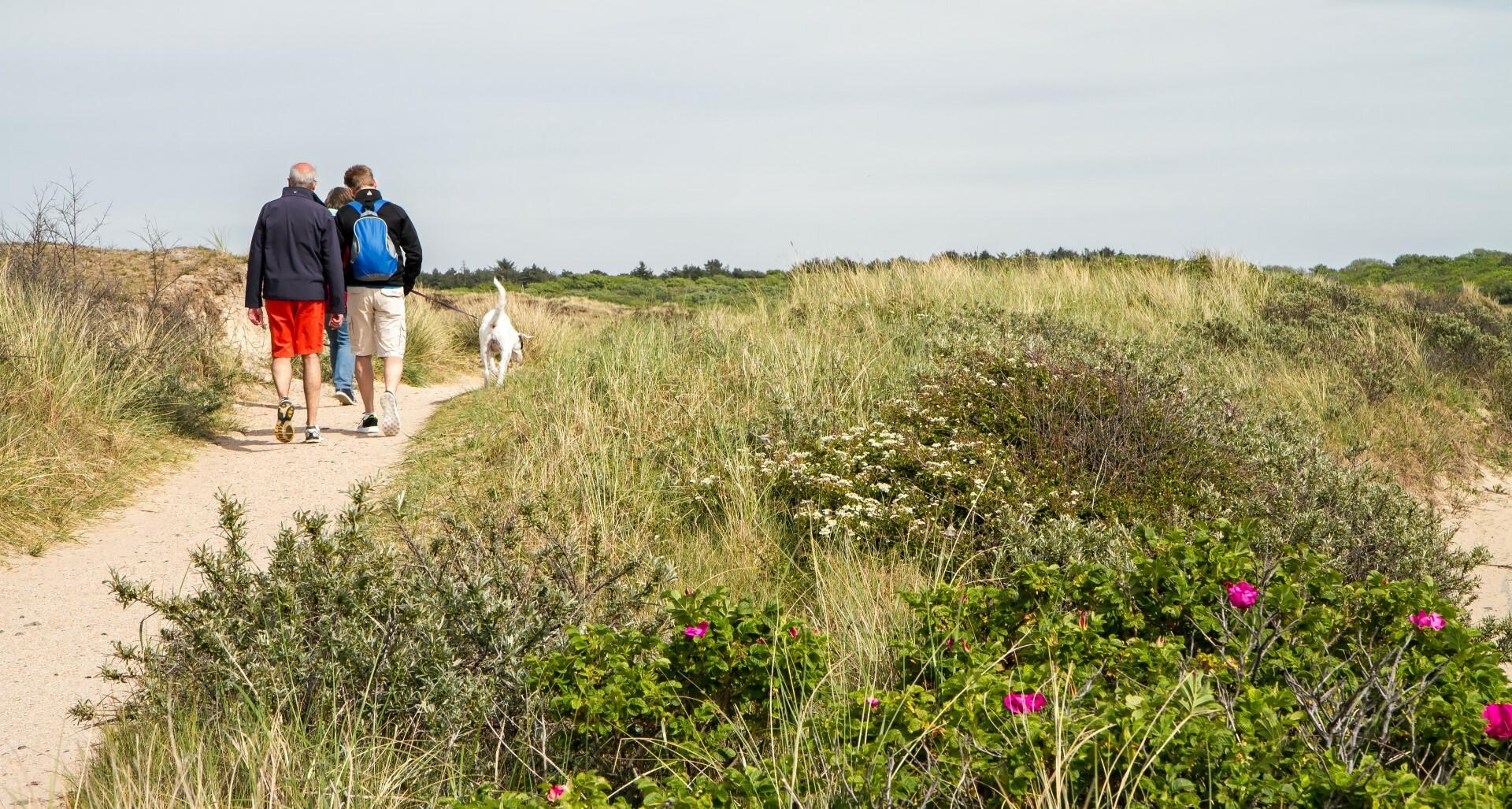 Wandelen in de duinen met hond VVV Texel fotograaf Justin Sinner