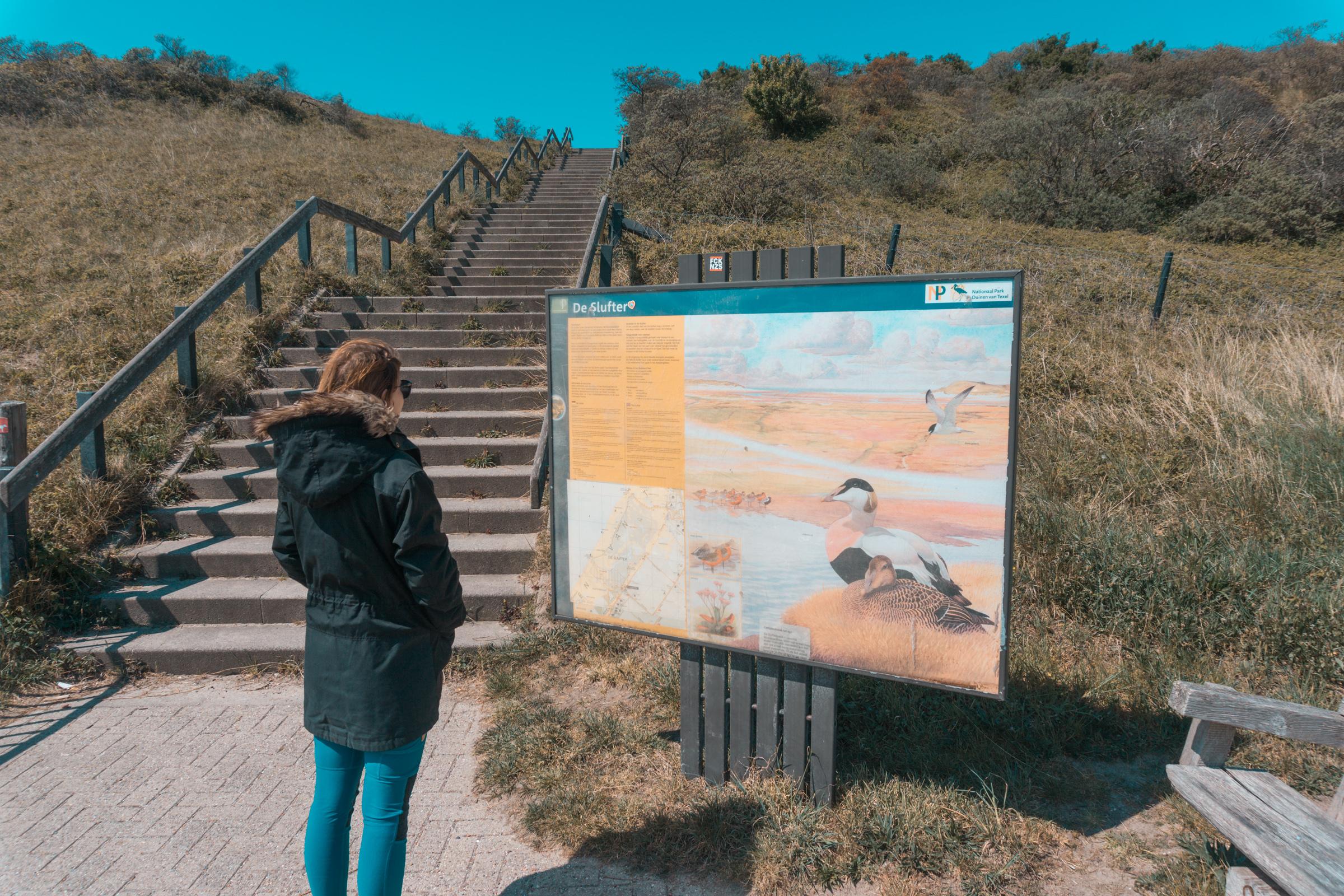 Wandelroute bij De Slufter VVV Texel fotograaf Kaz Paul